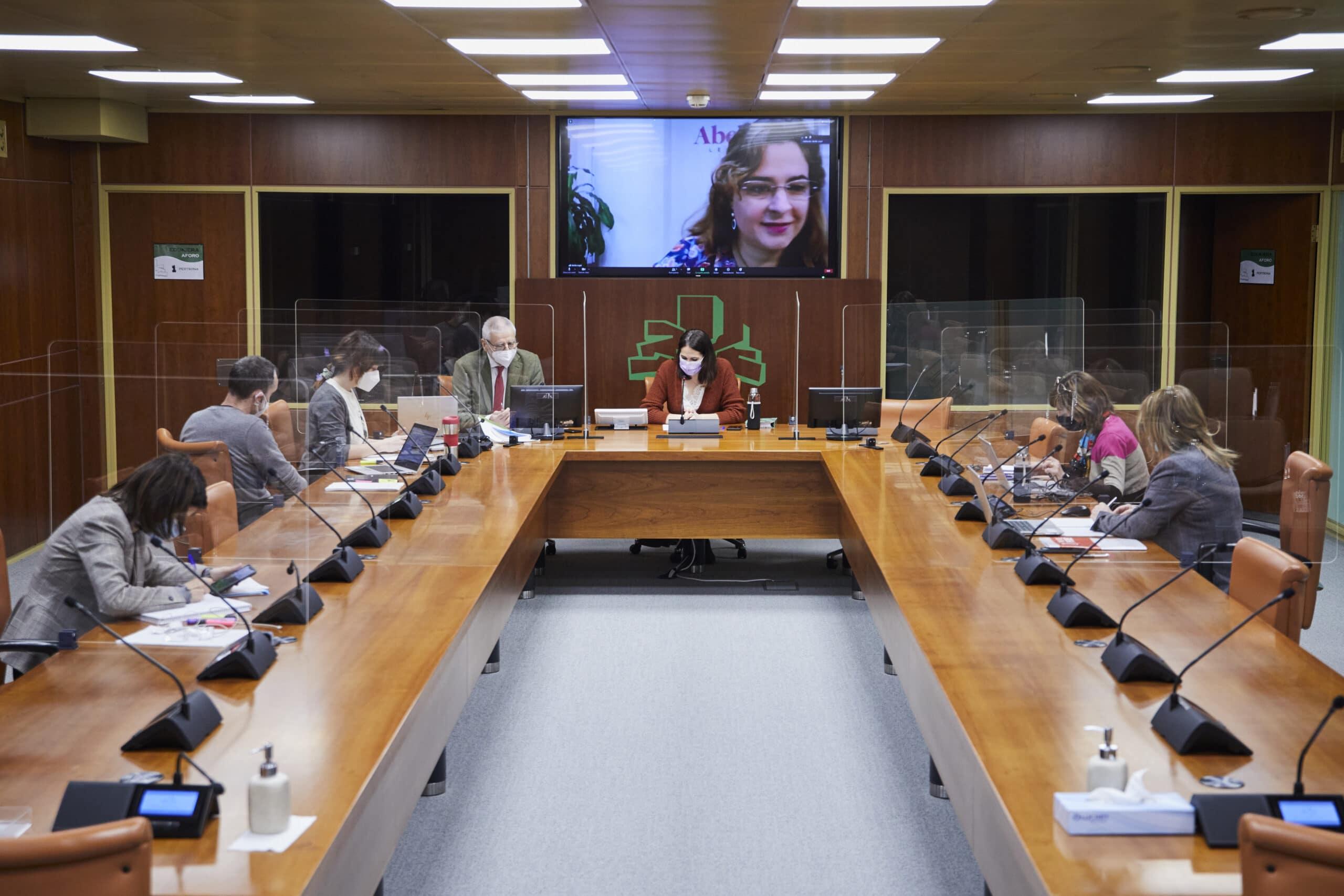 2021-02-16 Comparecencia ante el Parlamento Vasco - Comisión de Derechos Humanos, Igualdad y Justicia
